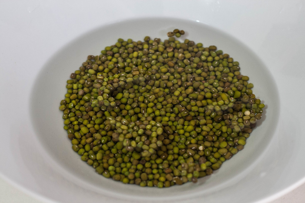 sprouting lentils (1 of 1)-3